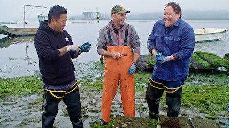 Watch Hog Island. Episode 4 of Season 2.